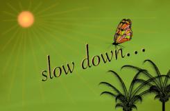 Lorsqu'on ralentit, la magie opère !
